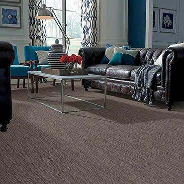 Anso® Nylon Carpet | Conroe, TX